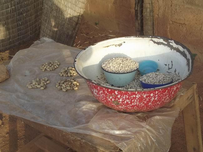 Burkina Faso, İHH ve Kurban 10