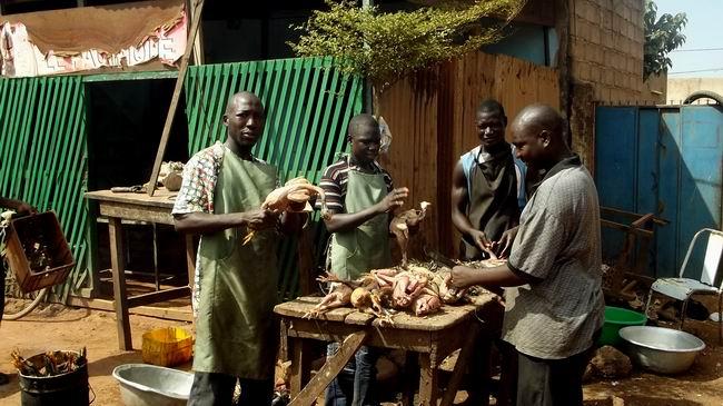 Burkina Faso, İHH ve Kurban 16