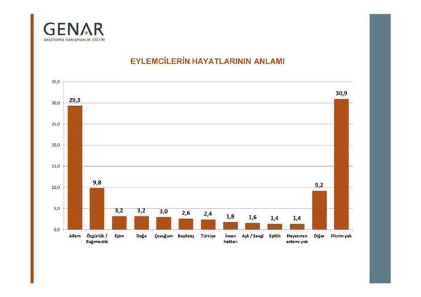 Taksim Gezi Parkı Anketi 6