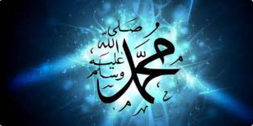 Kur'an'a göre Resul kavramının anlamı ve beşer olmaktan kaynaklanan doğal özellikleri