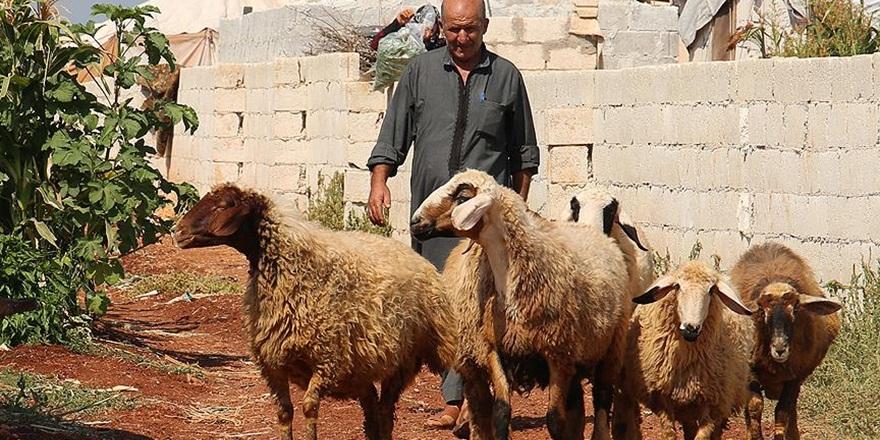 Suriye'de Besicilerin Umudu Yardım Kuruluşları
