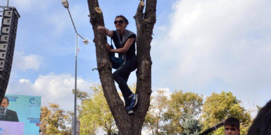 Mağduriyetin Giderilmesi İçin Eşinizin Ağaca Çıkması mı Gerekir?
