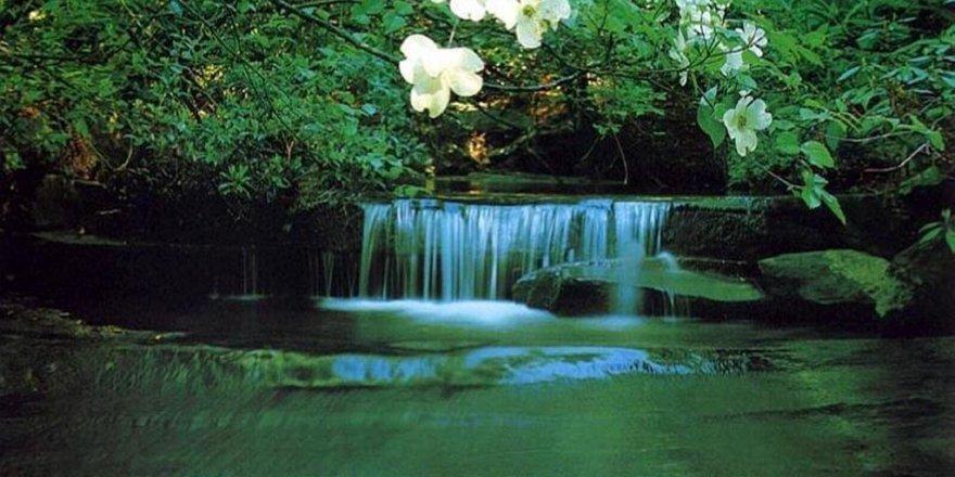 İyilik Irmağını Kurutmadan…