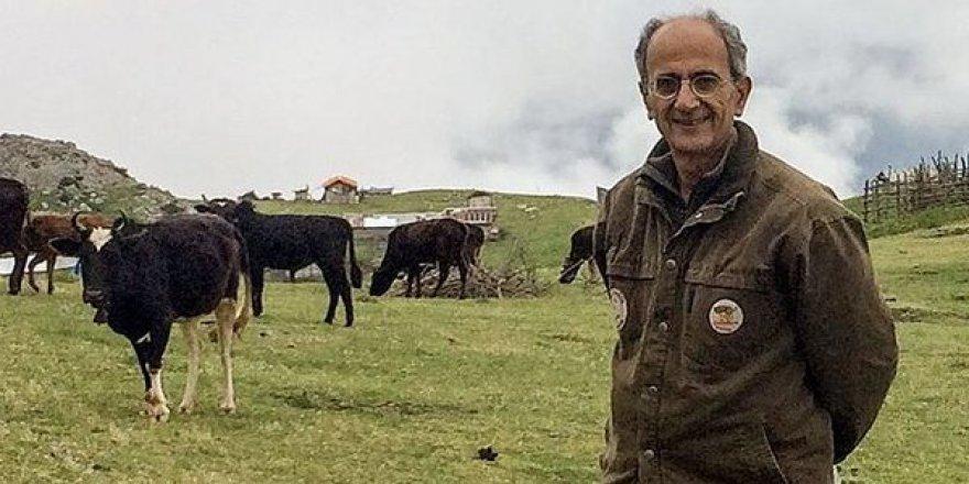İran-Kanada Vatandaşı Çevre Aktivisti Cezaevinde Öldü