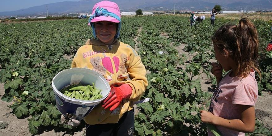 """Başbakanlıktan """"Çocuk İşçiliği ile Mücadele"""" Genelgesi"""