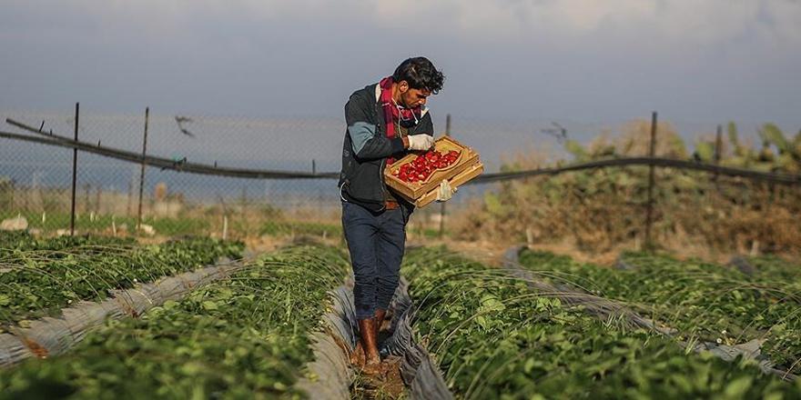 'Devlete Ait Verimli Toprakları Tarım Amaçlı Kiraya Verelim' Çağrısı