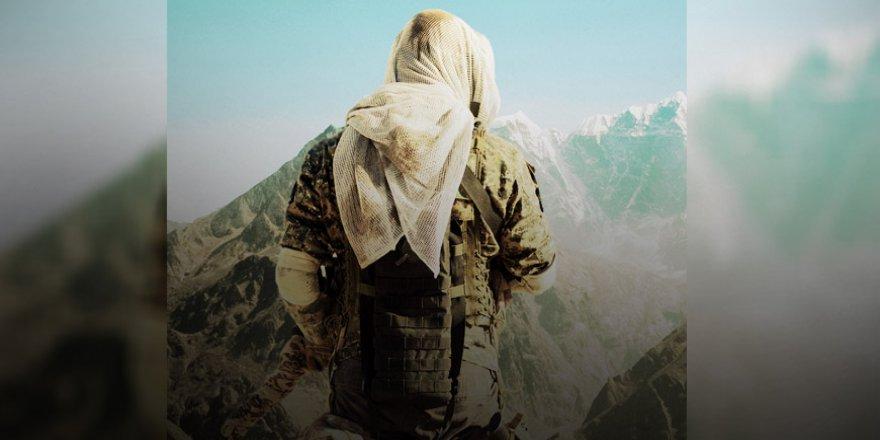 Ensaru'l İslam ile Kürdistan ve İslami Hareketler Üzerine