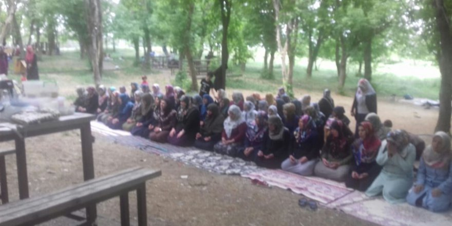 Diyarbakır Özgür-Derli Bayanlar Piknikte Buluştu