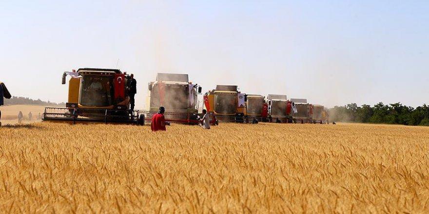 Tarımda kimyasal gübre kullanımı azaltılacak