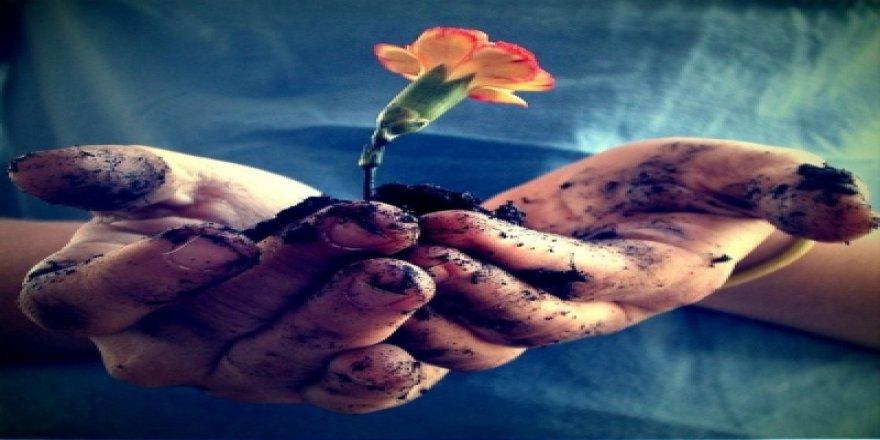 Ahlakla Yoğrulmayan Düşünce Toplumda Maya Tutmaz