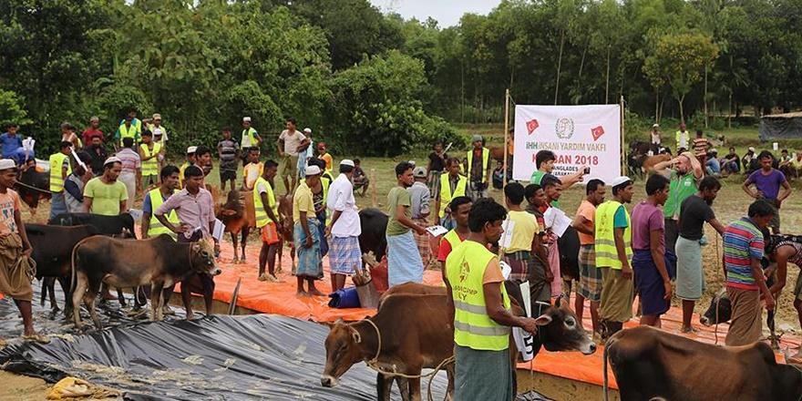 İHH'dan Cox's Bazar'daki Arakanlı Müslümanlara Kurban Yardımı