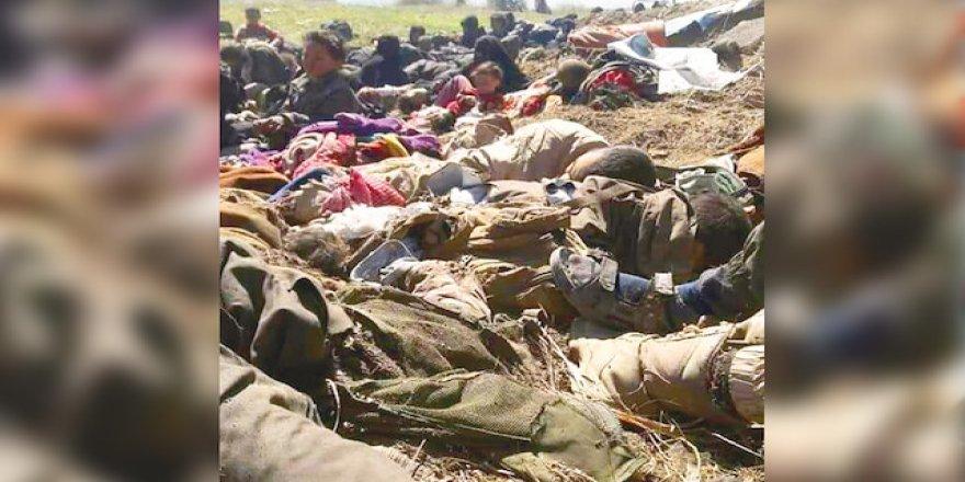 Bülent Yıldırım: Bagoz'da Yaşanan Katliamın Yeni Zelanda'dan Farkı Ne?