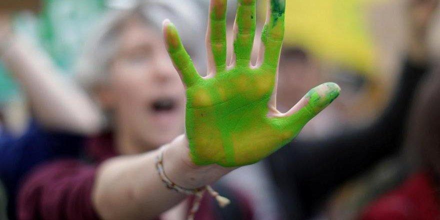 İrlanda İklim İçin Acil Durum İlan Etti