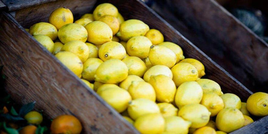 Limon Fiyatları Depoda Çürümesi Nedeniyle Yükseldi