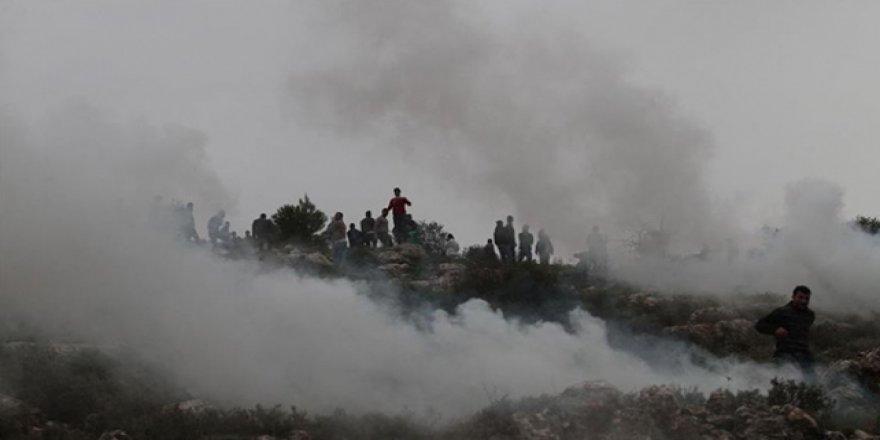 Batı Şeria'da Yahudiler Filistinliler'e Ait Zeytinlikleri Yaktı