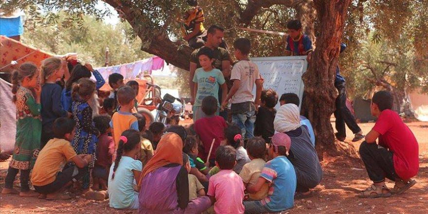 İdlib'de Savaş Mağduru Çocuklara Eğitim Zeytin Ağacı Altında Veriliyor