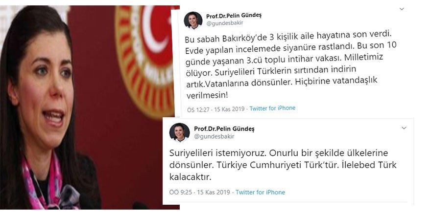 AK Parti Kayseri Eski Milletvekili Pelin Gündeş Bakır'ın Suriyeli Mültecilere Yönelik Irkçı Hezeyanları!
