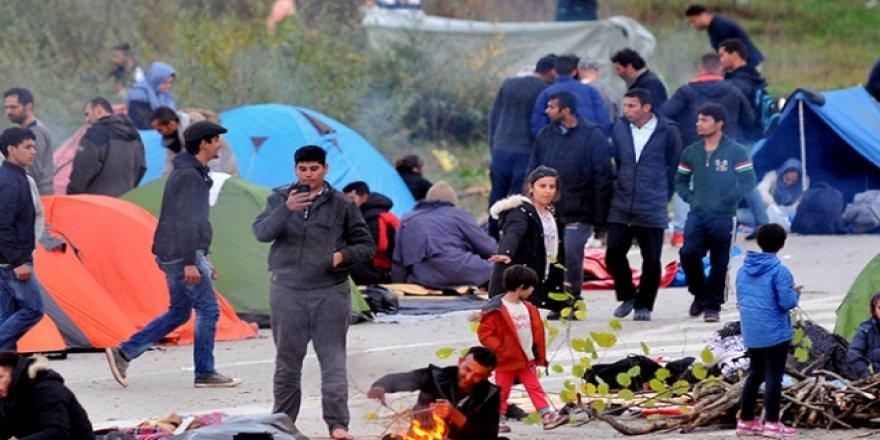 Bosna'daki 4 Bin Pakistanlı Mülteci Geri Dönmek İstemiyor
