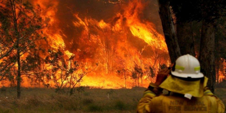 Avustralya'nın Başkent Bölgesindeki Yangın 55 Bin Hektardan Fazla Alanı Kül Etti