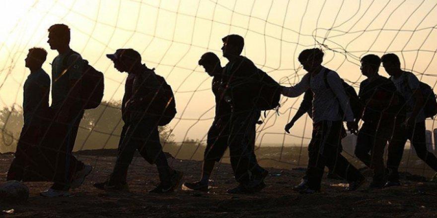 ABD'ye Göç Geçici Süreyle Durdurulacak
