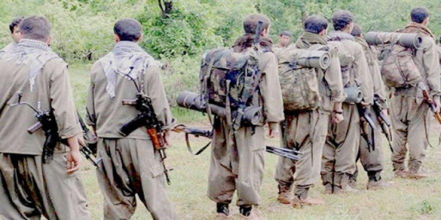 Haşdi Şabi, Sincar'daki PKK'lıları maaşa bağladı