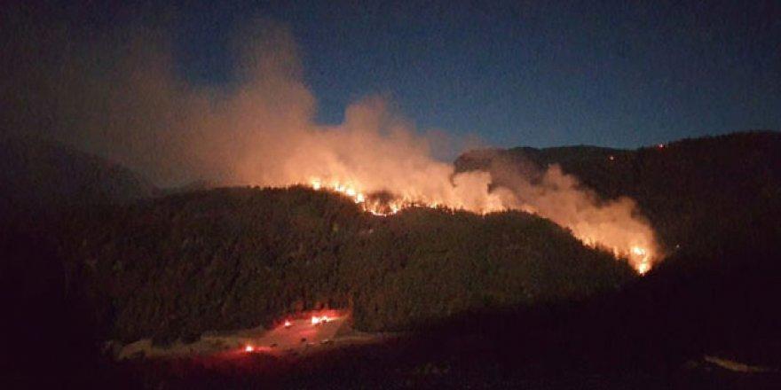 20 ilde çıkan yangınlardaki son durum