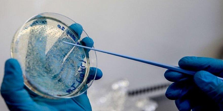 İngiltere'de geliştirilen aşı Uganda'da denenecek