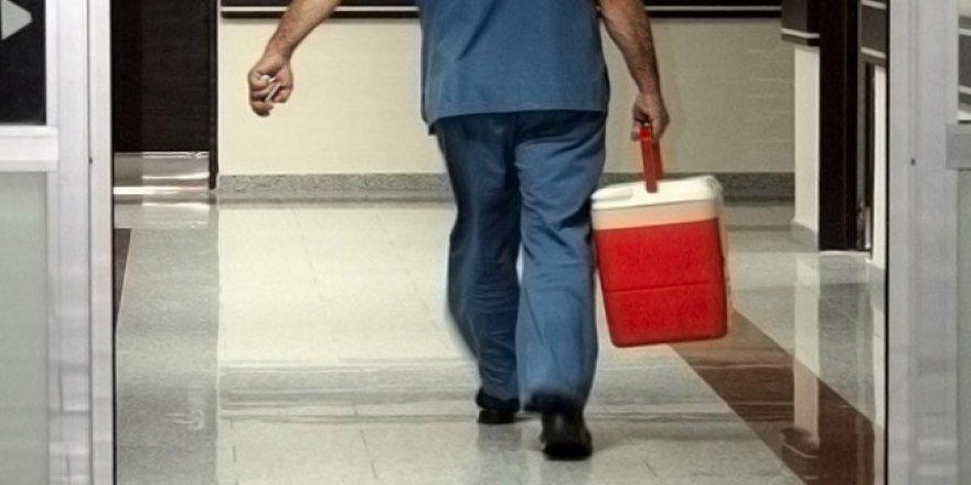Mısır'da kan donduran organ kaçakçılığı iddiası