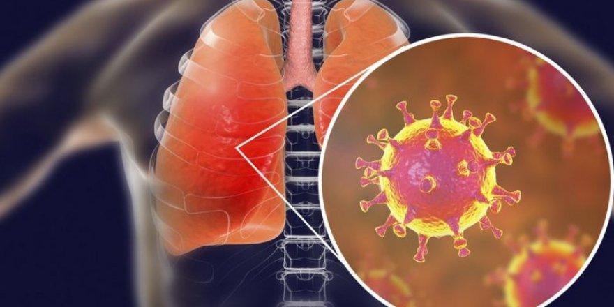 Yeni araştırmalara göre korona geçiren kişilerin bağışıklığı 3 değil, 8 ay