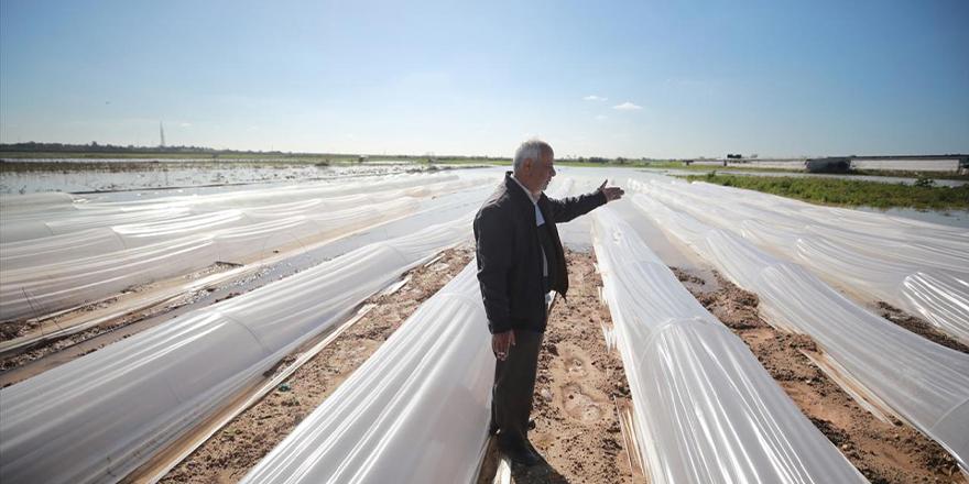 İsrail Gazze'deki tarım arazilerini sular altında bıraktı