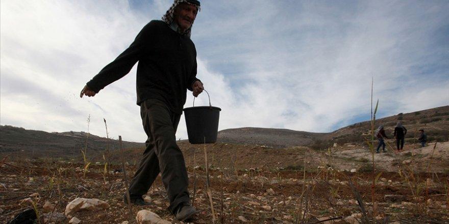Siyonist İsrail Batı Şeria'da Filistin'in 147 dönüm arazisine el koydu
