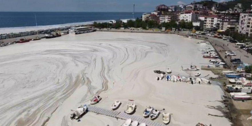 Marmara Denizi'ndeki 'deniz salyası' neden kaynaklanıyor?
