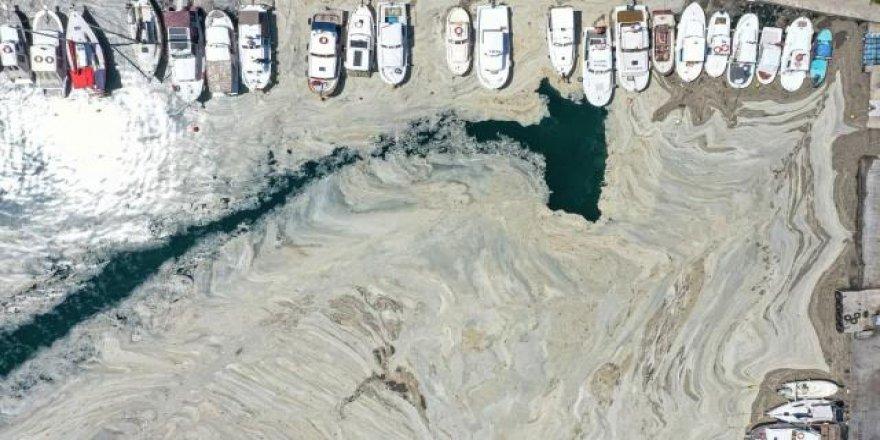Tarihte deniz salyası başka hangi denizlerde görüldü, nasıl temizlendi?