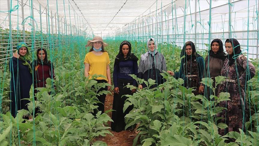 Türkiyeli ve Suriyeli kadınlar kurdukları kooperatifle güçlerini birleştirdi