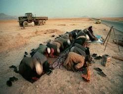 Talibandan Hamas Liderliğine Tebrik ve Kutlama