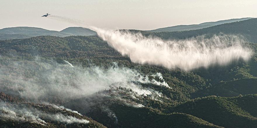 Pakdemirli, iki yer dışında tüm orman yangınları kontrol altında
