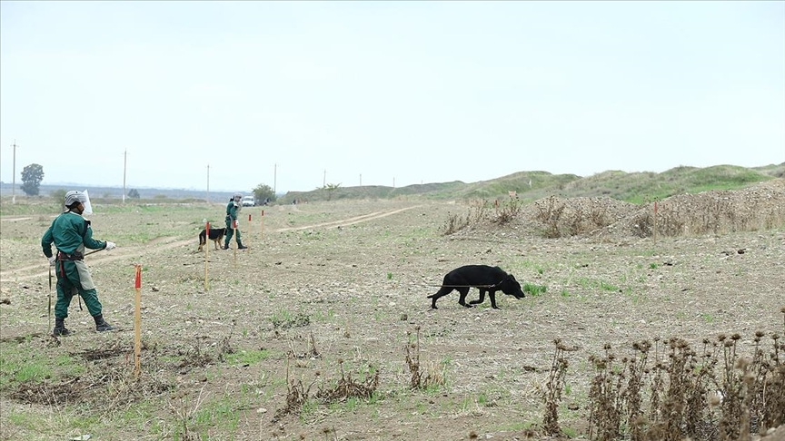 Azerbaycan'da 48 bin patlamamış mayın etkisiz hale getirildi