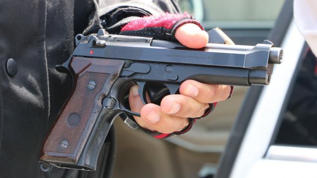 Almanya'da sınırdaki silahlı ırkçılara müdahale