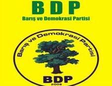 BDP'li Başkana Linç Girişimi