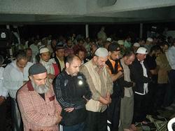 Kayıp Filistin Gönüllüleri Hakkında…