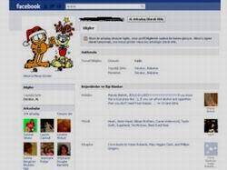 Facebook'ta Çizgi Kahraman Furyası Fos Çıktı!