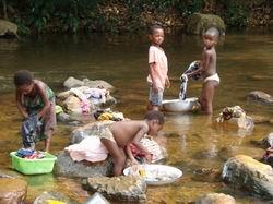 Afrikalılar mı Aç, Yoksa Biz mi Hayvan Gibi Yiyoruz?