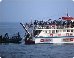 Yardım Gemileri Gazzeye mi Gitti?