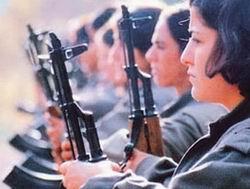 Bingölde Çatışma: 8 PKKlı Öldü