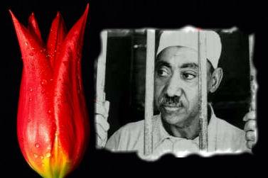 Sisi Cuntasından Benna, Kutup ve Karadavi'nin Kitaplarına Yasak
