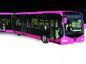 Pembe Metrobüs İçin 60 Bin İmza