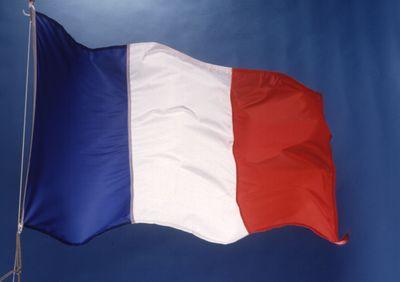 Fransa'dan PYD Açıklaması