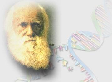 Evrim Teorisini Dinleştirmek