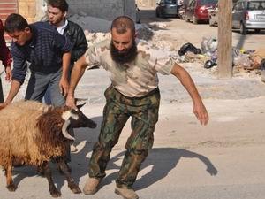 Kurbanlarımız Suriyeli Kardeşlerimiz İçin Kesildi!