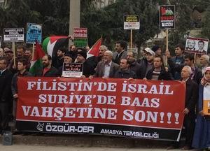 Amasya'da Gazze ve Suriye Eylemi (FOTO)